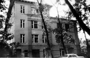 193981351